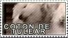 Coton de tulear stamp by Tollerka
