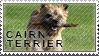 Cairn terrier stamp by Tollerka