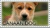 Cannan dog stamp