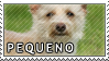 Pequeno stamp by Tollerka