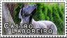 Cao de Castro Laboreiro stamp by Tollerka