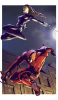 Daredevil n' Black Widow
