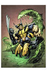 Swamped Wolverine