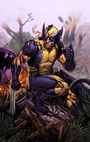 Wolverine vs Sentinel by spidermanfan2099