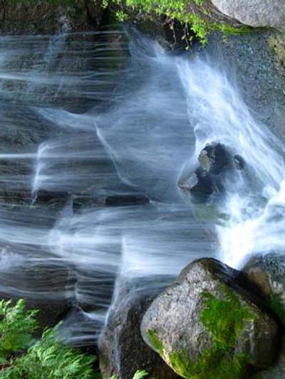 cachoeiras arboreto