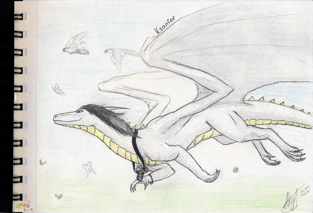 free sketch 1 - Ksantor by axe-ql