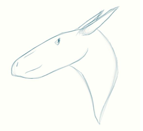 Eryops3's Profile Picture