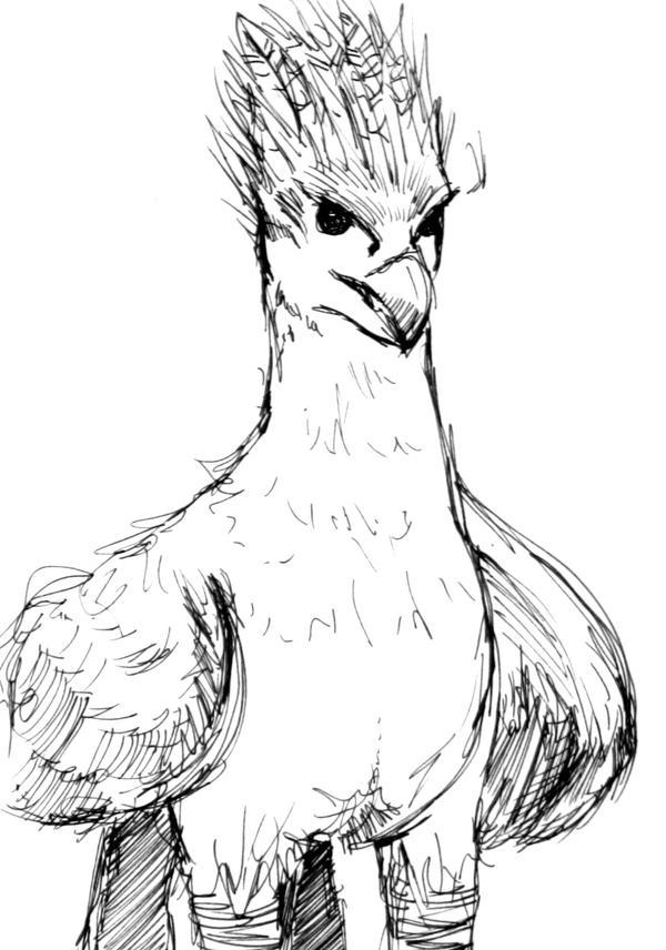 buckbeak coloring pages - photo#24