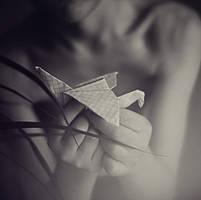 crane by isidasontz