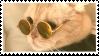 cat stamp 2