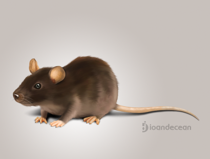 mouse - digital painting