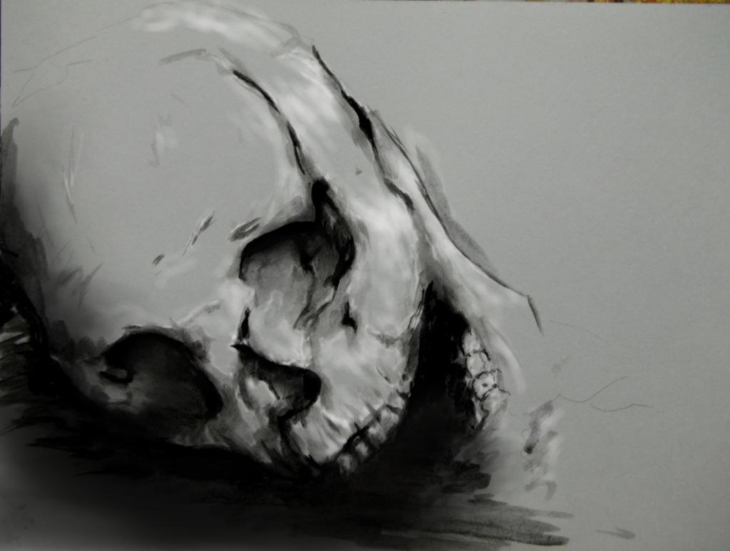 skull by Lera1412