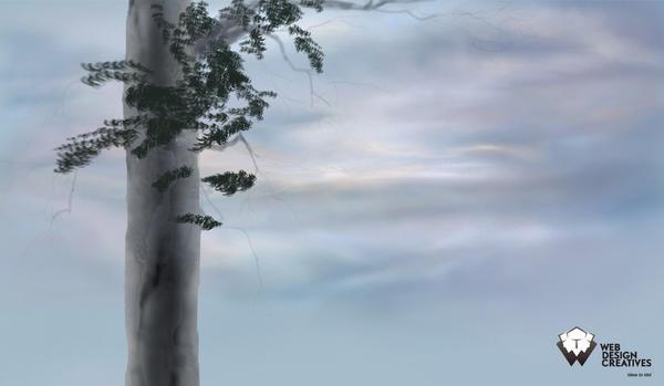 Blue Sky in Rainy Days