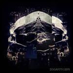 Skeletal Fusion #4