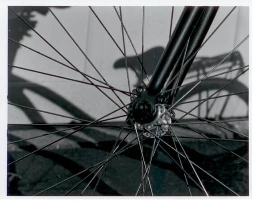 Wheel Focus