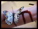 Butterfly Stitch.