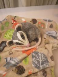 Needle Felted Baby Opossum by KassieStoryKai