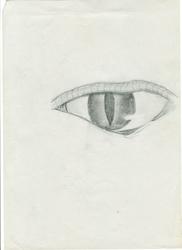 Eye by Erodon