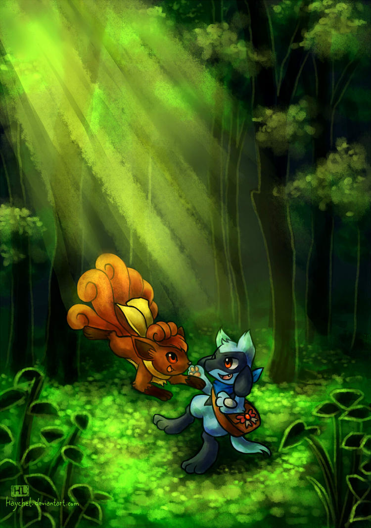Fox and the Jackal by Haychel