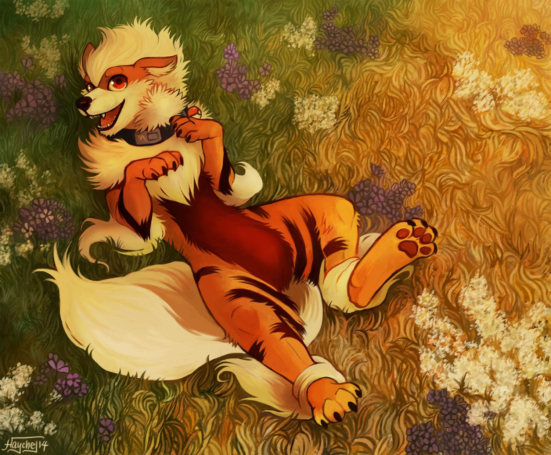 Kiba by Haychel