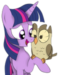 Twi and Her Owl