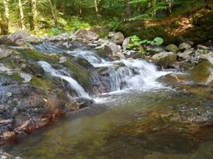 Little lovely waterfall