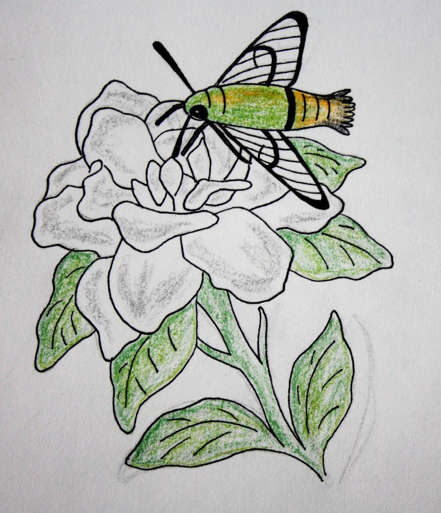 gardenia tattoo design by nightengaleprincess on deviantart. Black Bedroom Furniture Sets. Home Design Ideas