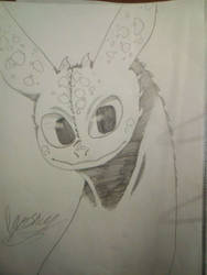 Toothless sketch #03