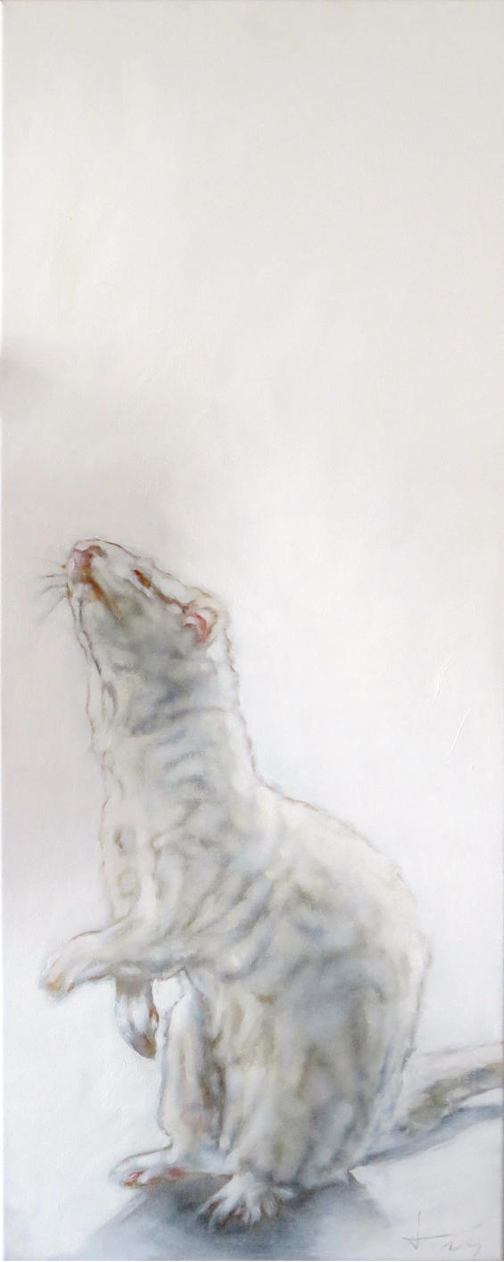 Ferret painting by jahupo