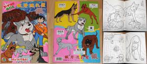 Ginga Nagareboshi Gin Coloring Book