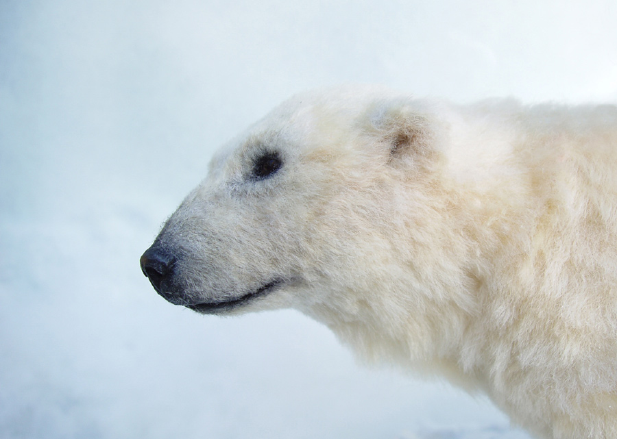 SCULPTURE Polar Bear close up by pixiwillow