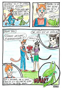 Darek pro Princeznu Kocicku - str2.