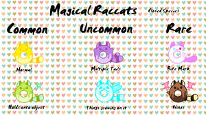Reference Sheet Magical Raccats
