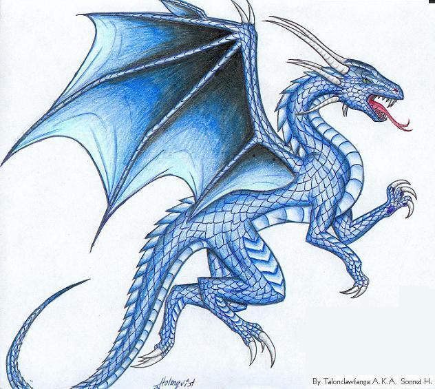 Flying Blue Dragon Recipes — Dishmaps