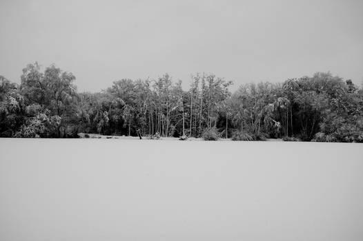 Lakeside Snowscape - Wideangle
