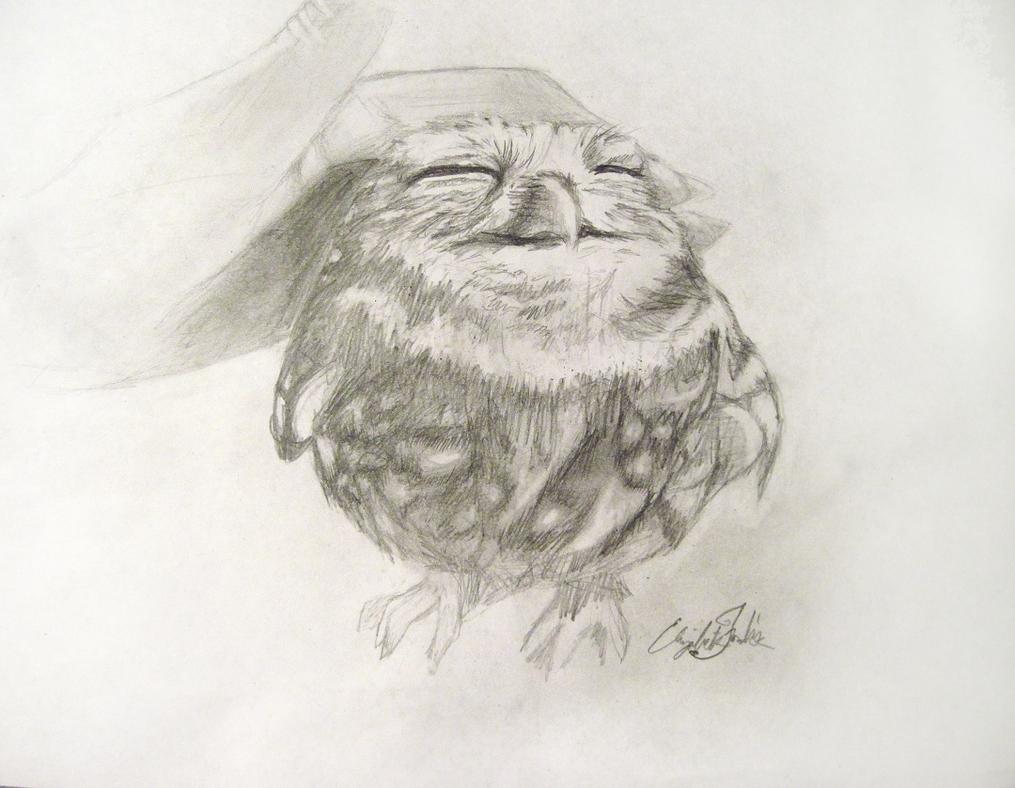 Happy Owl by lizzieFoz