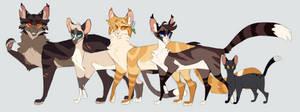 Tigerstar/Sasha family