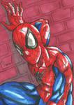 Spider-Man Sketch Card