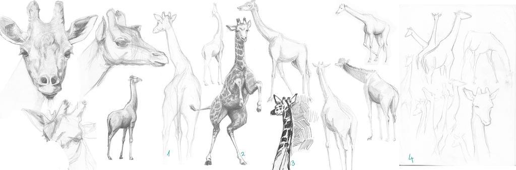 Zancas Giraphes by Zacnart