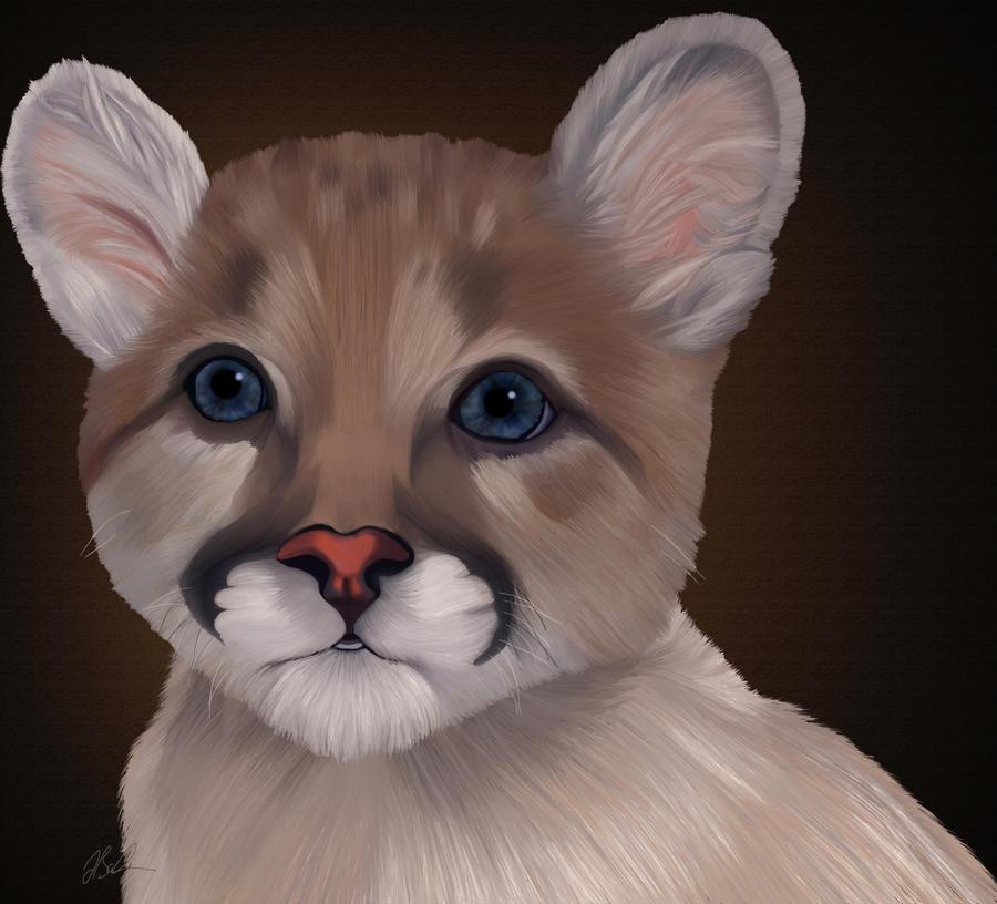 Mountain lion cub by JillySB