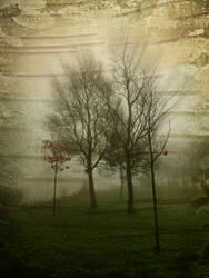 How to Edit Low Quality Image in Photoshop by CorneliaMladenova