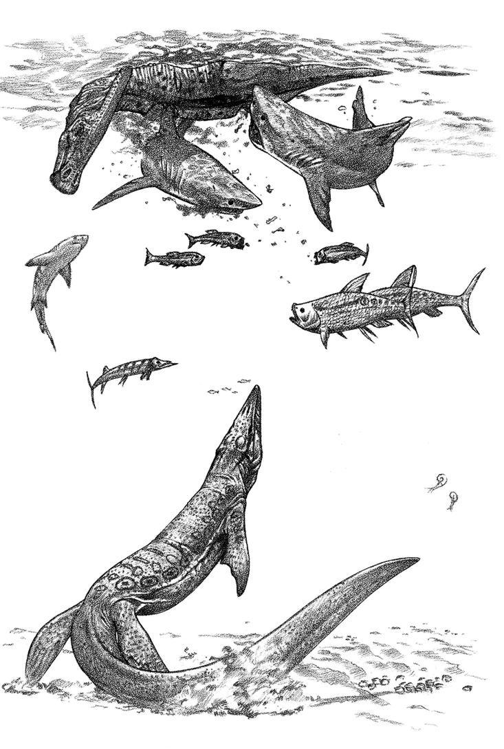 mosasaurus and sharks by dewlap