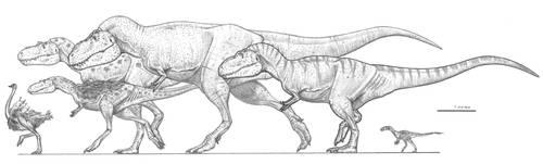 Tyrannosaurids