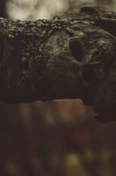 skull texture3