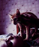 My Feline Friend And I by MahiraKhairia