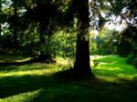 Lenox Lawn