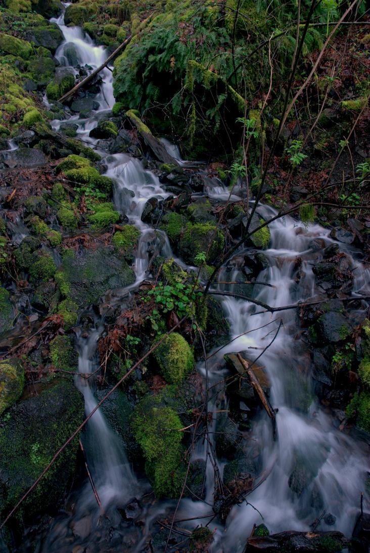 Side-stream by strangledbyart