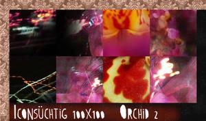 Orchid 2 Texturen