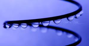 Drops in Drops