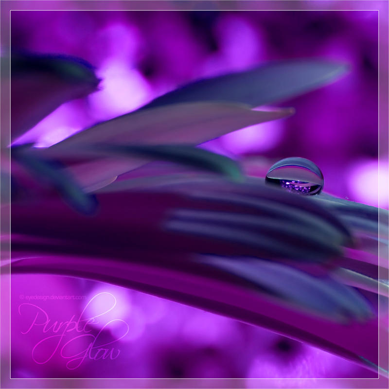 Purple Glow by eyedesign